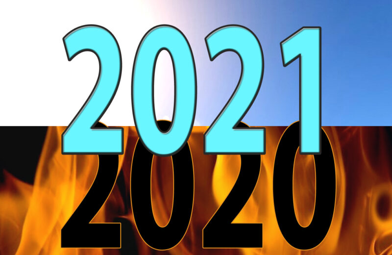 The Lessons of 2020—The Reality Check of 2021