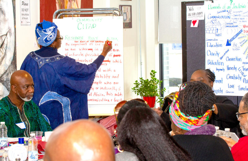 CIPAD promises research to address inequities facing Blacks